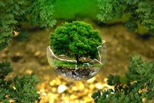 Handla mer ekologiskt